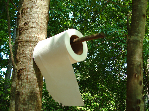 Toilet Paper Production Uses 27k Trees A Day