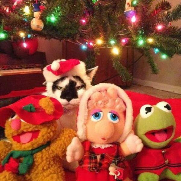 Christmas Grump