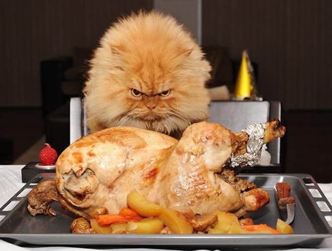 Demonizing The Turkey