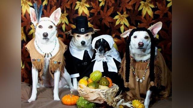 Thanksgiving Squad