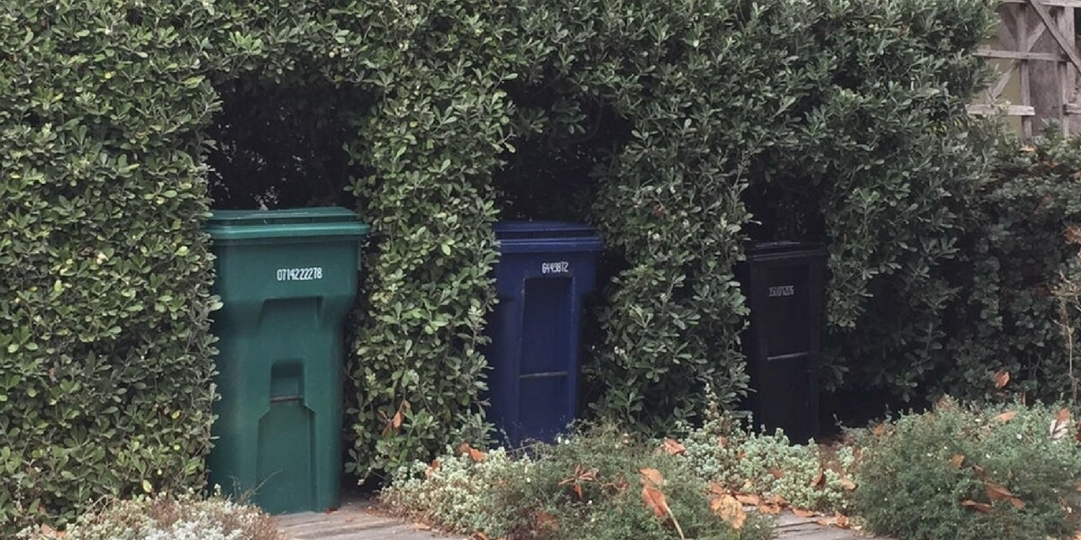 Hedge Cut For Garbage Cans.jpg