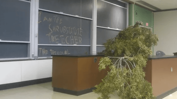 This Teacher Was Replaced By A Tree