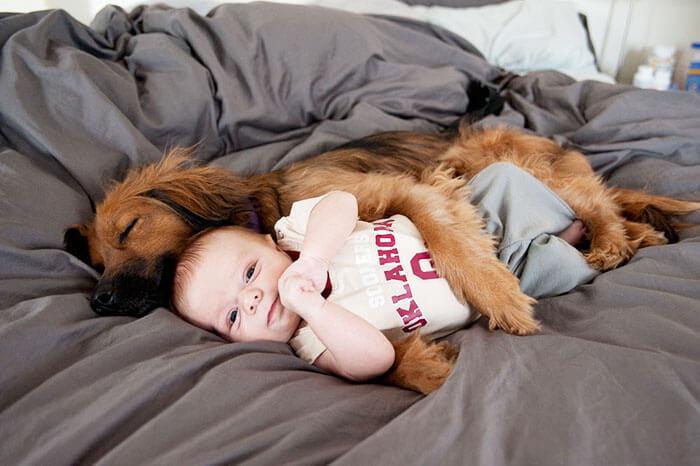 Cuddle Buddy.jpg
