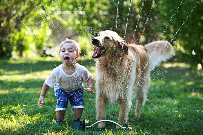 Dog Sprinkler.jpg