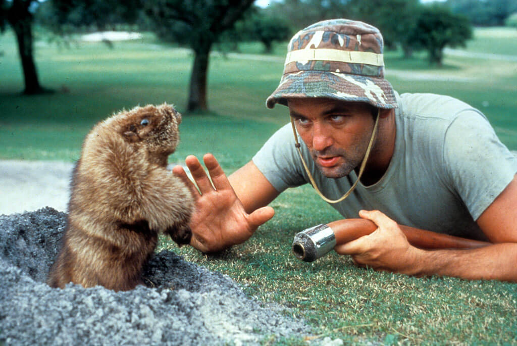 caddyshack-movie.jpg