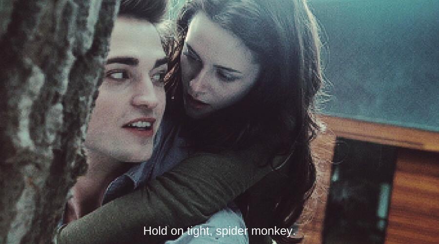 twilight spider monkey.jpg