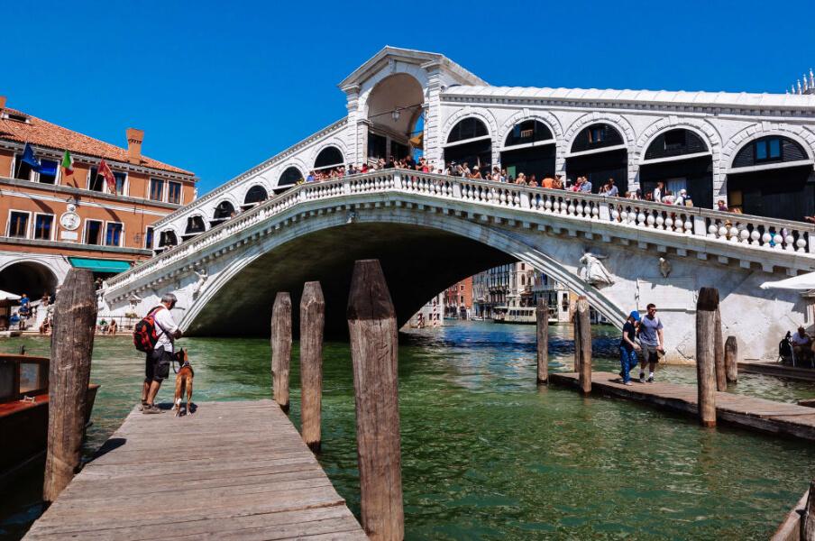 _Rialto bridge.jpg