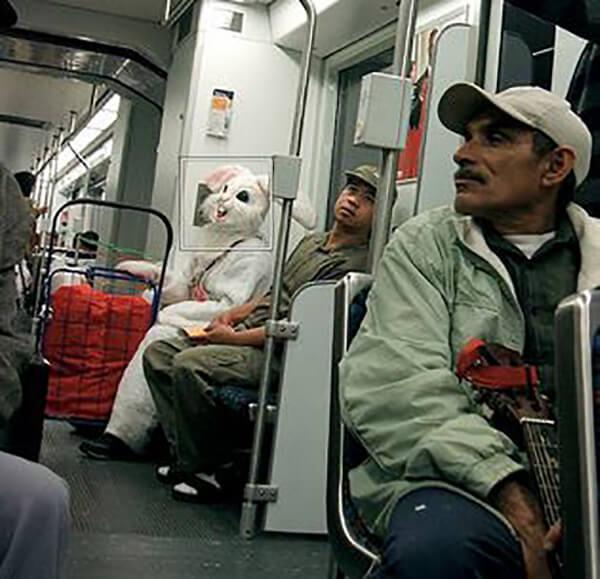train-bunny-creeps.JPG